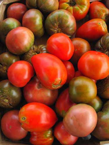 heirloom tomatoes from Greenstar farm